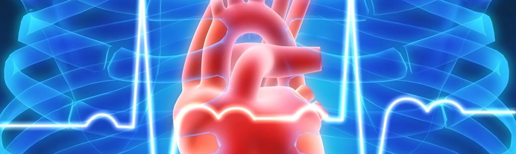kardiológia ekg szív ultrahang