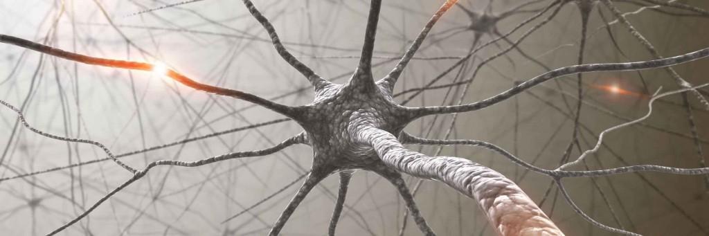 neurológia budapest
